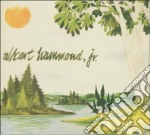 Albert Hammond Jr - Yours To Keep cd musicale di HAMMOND ALBERT JR.