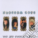 Blossom Toes - We Are Ever So Clean cd musicale di Toes Blossom