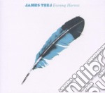 James Teej - Evening Harvest cd musicale di James Teej