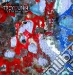 I'll tell what i saw cd musicale di Trey Gunn