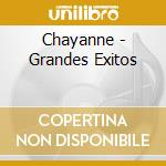 Grandes exitos cd musicale di Chayanne
