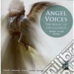 Voci d'angelo: la magia dei castrati (in cd musicale di Philippe Jaroussky