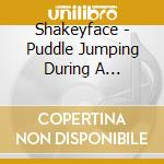 Puddle cd musicale