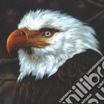 Mogwai - The Hawk Is Howling cd musicale di MOGWAI