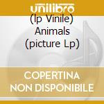 (LP VINILE) ANIMALS (PICTURE LP) lp vinile di PINK FLOYD