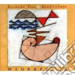 Riccardo Tesi - Madreperla cd musicale di Riccardo Tesi