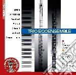 Trio ecoensemble cd musicale di Miscellanee