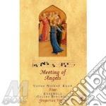 Meeting of angels cd musicale di Nishat khan &bichois