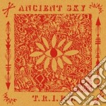 Ancient Sky - T.r.i.p.s. cd musicale di Sky Ancient