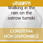 Walking in the rain on the ostrow tumski cd musicale
