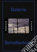 HAARP                                     cd musicale di Schallschutz Galerie