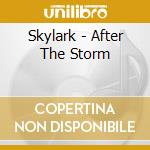 After the storm cd musicale