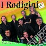 Rodigini, I - Dove Sei cd musicale di I Rodigini