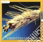 CHI NON CAPISCE L'AMORE ABBAST            cd musicale di TARANTULA GARGANICA