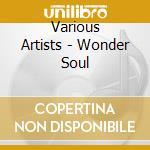 Wonder soul cd musicale