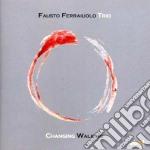Fausto Ferraiuolo Trio - Changing Walking cd musicale di Ferraiuolo fausto trio