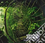 Electric Swan - Swirl In Gravity cd musicale di Swan Electric