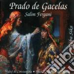 Salim Fergani - Prado De Gacelas cd musicale di Salim Fergani