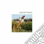 (LP VINILE) Common ground lp vinile di Walter Trout