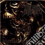 Visceral Bleeding - Transcend Into Ferocity cd musicale di Bleeding Visceral