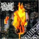 Torture Severe - Butchery Of The Soul cd musicale