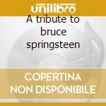 A tribute to bruce springsteen cd musicale