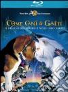 (Blu Ray Disk) Come cani e gatti