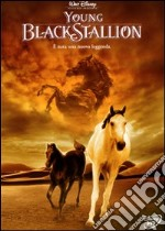 Young Black Stallion film in dvd di Simon Wincer