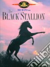 (Blu Ray Disk) Black Stallion dvd
