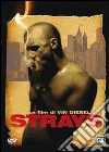 Strays dvd