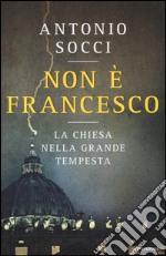 Non è Francesco. La Chiesa nella grande tempesta libro