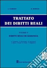 Trattato dei diritti reali. Vol. 5: Diritti reali di garanzia