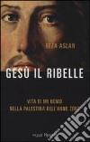 Gesù il ribelle libro