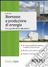 Biomasse e produzione di energia. Dalla gassificazione alla pirolisi libro