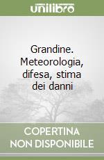 Grandine. Meteorologia, difesa, stima dei danni libro di Borin Maurizio - Caprera Paolo - Tullio Leonardo