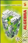 Algebra 1. Tomo B. Per le Scuole superiori libro