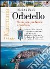 Orbetello. Storia arte ambiente e territorio libro