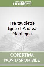 Tre tavolette ligne di Andrea Mantegna libro di Negro Emilio
