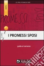 I Promessi Sposi. Guida al romanzo libro
