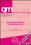 Numerical methods for balance laws libro