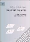 Geometria e algebra. Vettori, equazioni e curve elementari libro