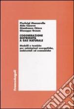 Cogenerazione distribuita a gas naturale. Modelli e tecniche per valutazioni energetiche, ambientali ed economiche
