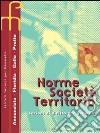Norme, società, territorio. Diritto per geometri. per gli Ist. Tecnici per geometri libro