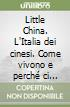 Little China. L'Italia dei cinesi. Come vivono e perch� ci fanno paura. Con DVD