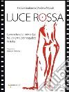 Luce rossa. La nascita e le prime fasi del cinema pornografico in Italia libro