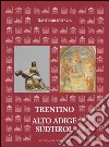 Santuari d'Italia. Trentino Alto Adige-Sudtirol libro