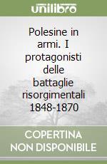Polesine in armi. I protagonisti delle battaglie risorgimentali 1848-1870 libro di Contegiacomo Luigi - Fasolin Laura