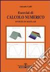 Esercizi di calcolo numerico svolti in Matlab libro