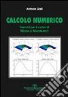 Calcolo numerico. Esercizi per il corso di modelli matematici libro