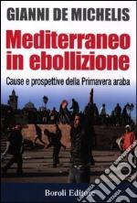 Mediterraneo in ebollizione. Cause e prospettive della Primavera araba libro